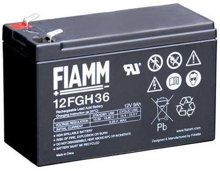 Immagine per la categoria Batterie UPS