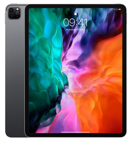 Immagine di APPLE IPAD PRO 12.9 INCH WIFI 128GB SPACE GREY