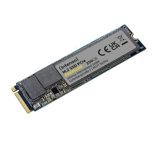 Immagine di INTENSO SSD INTERNO 250GB M2 NVME PCIE 1.3 GEN 3x4 2100/1700 MB/S
